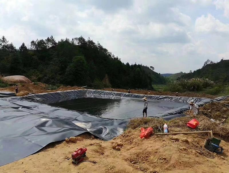渗滤液池施工