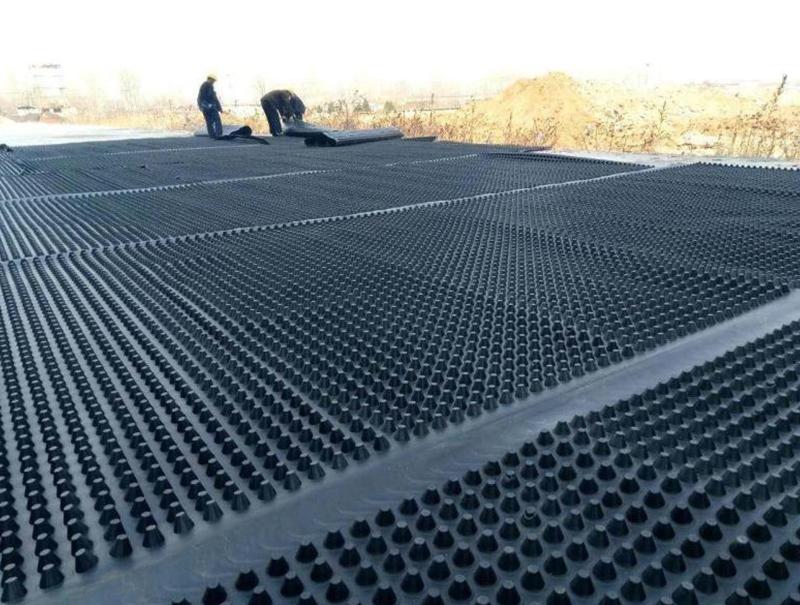 沈阳排水板